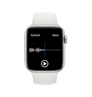History Part of voice recorder free on apple watch