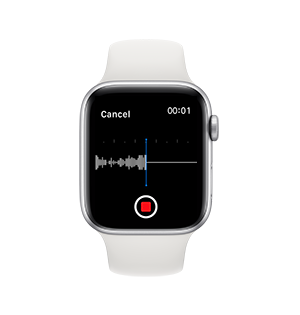 One Touch Play on apple watch